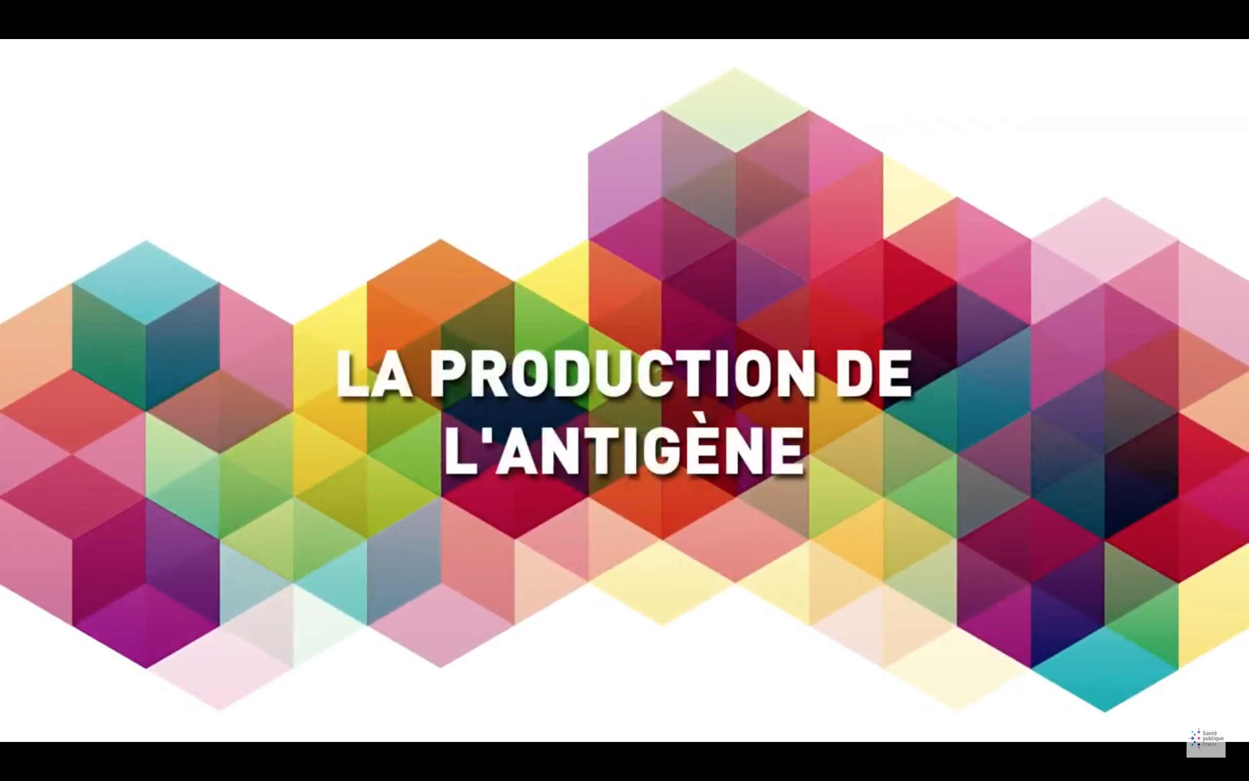 La production de l'antigène
